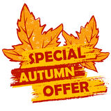 Autumn Special Offers!